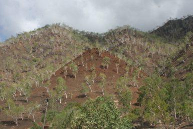 timor-leste-228286_1280